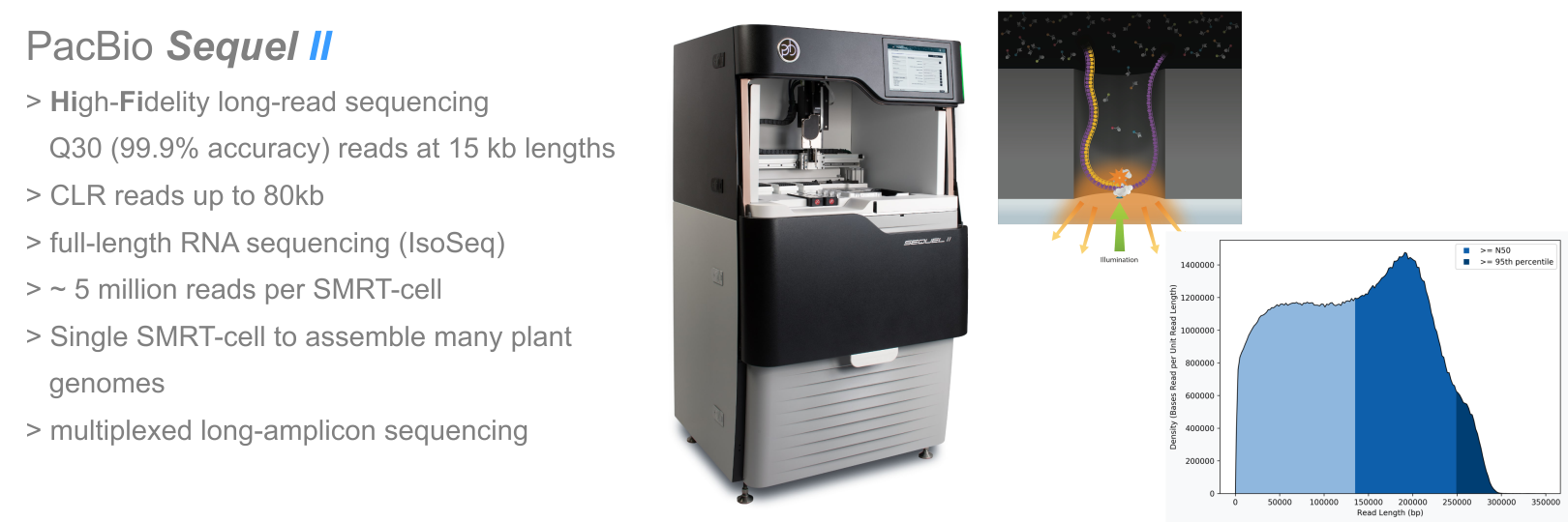 PacBio Sequel II single-molecule sequencer